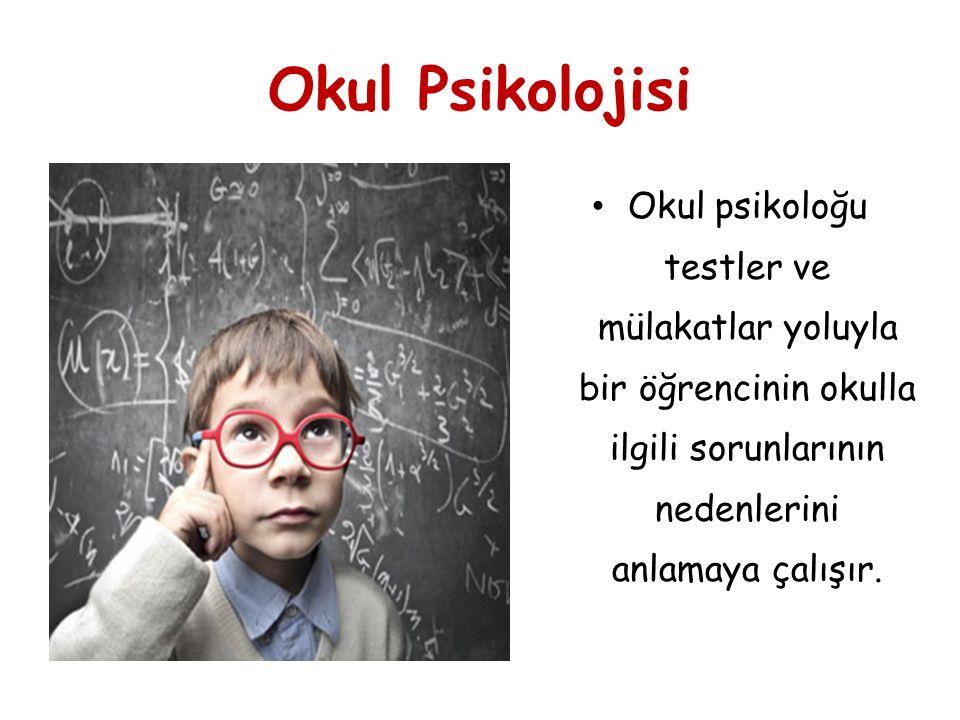 Okul Psikolojisi Okul psikoloğu testler ve mülakatlar yoluyla bir öğrencinin okulla ilgili sorunlarının nedenlerini anlamaya çalışır.