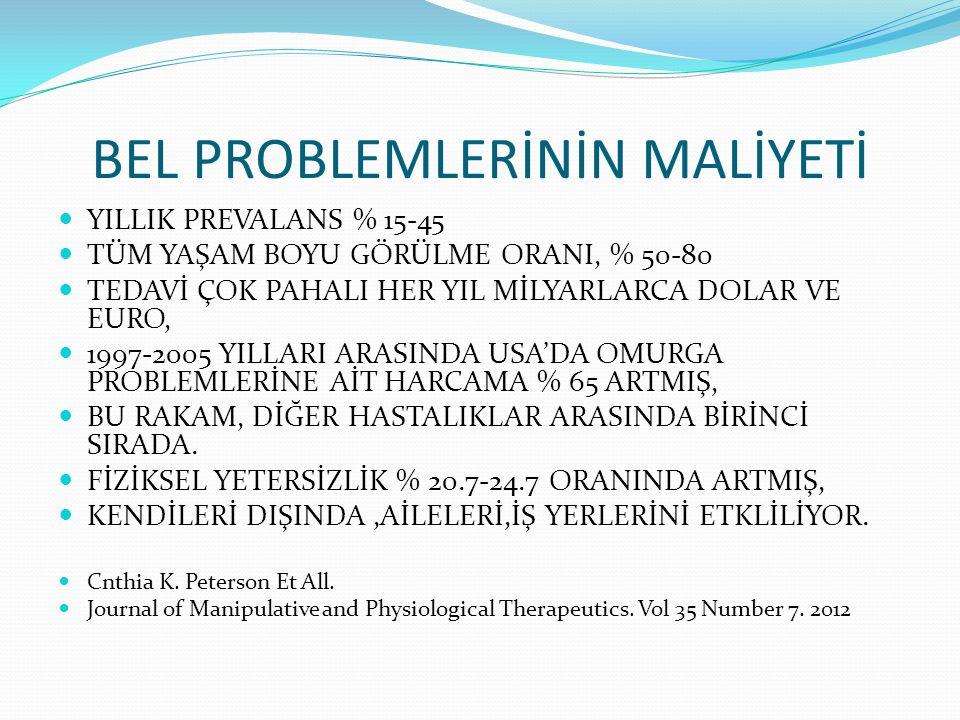 BEL PROBLEMLERİNİN MALİYETİ