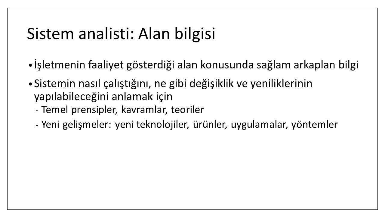 Sistem analisti: Alan bilgisi