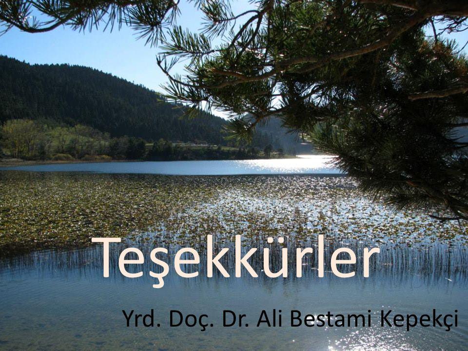 Teşekkürler Yrd. Doç. Dr. Ali Bestami Kepekçi