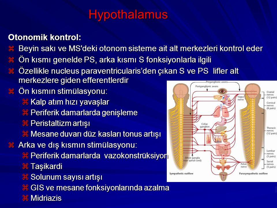 Hypothalamus Otonomik kontrol: