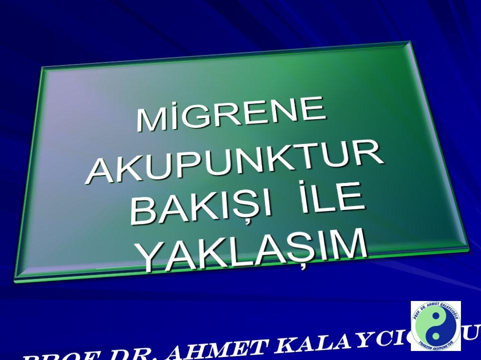 PROF.DR. AHMET KALAYCIOĞLU