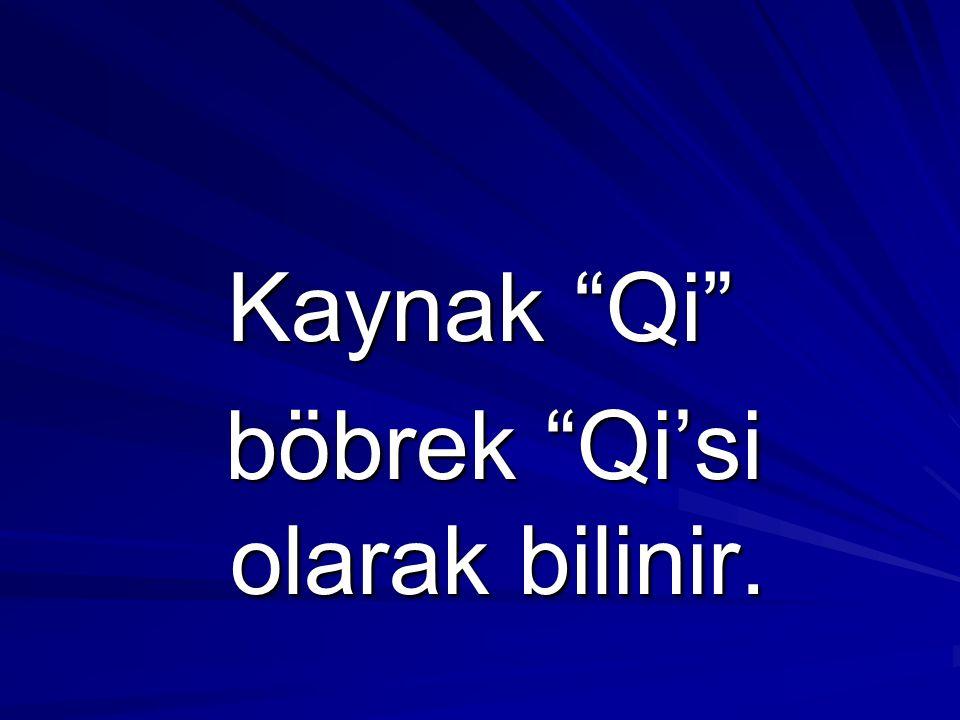 Kaynak Qi böbrek Qi'si olarak bilinir.