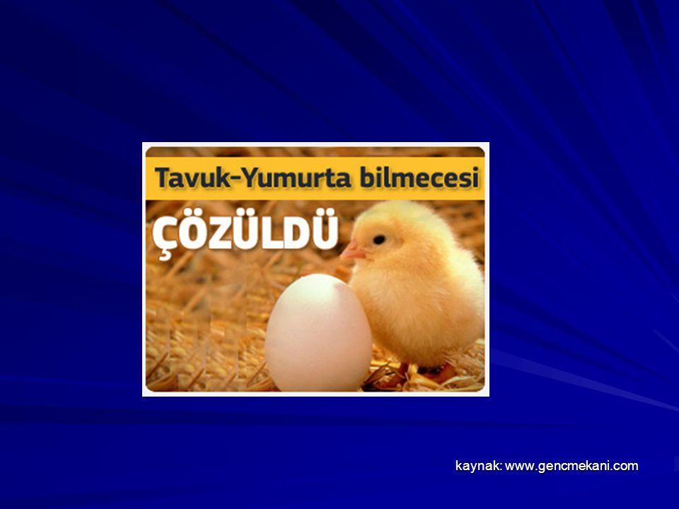 kaynak: www.gencmekani.com