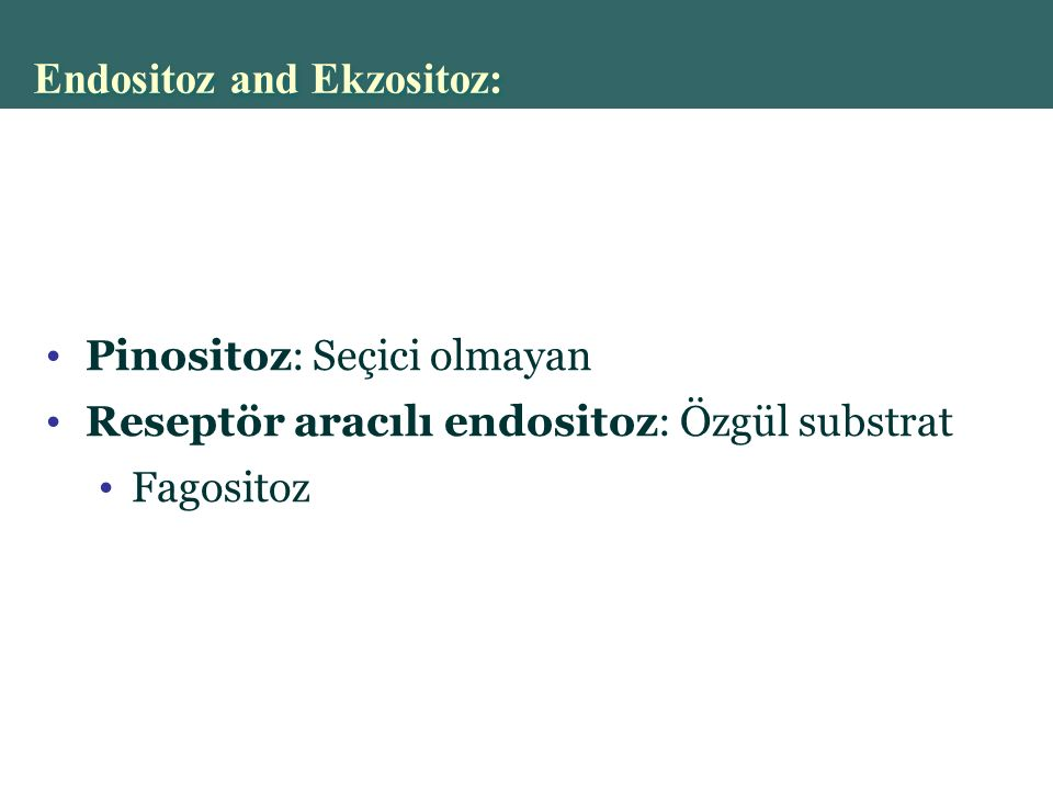 Endositoz and Ekzositoz: