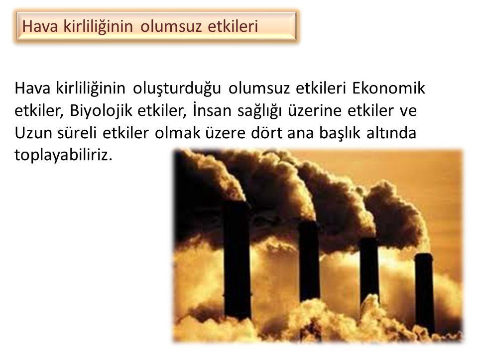 Hava kirliliğinin olumsuz etkileri