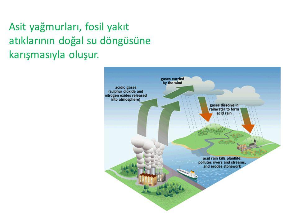 Asit yağmurları, fosil yakıt atıklarının doğal su döngüsüne karışmasıyla oluşur.