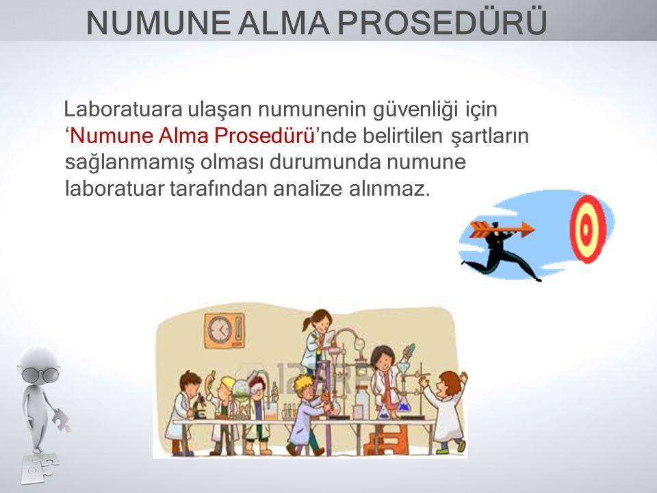 NUMUNE ALMA PROSEDÜRÜ