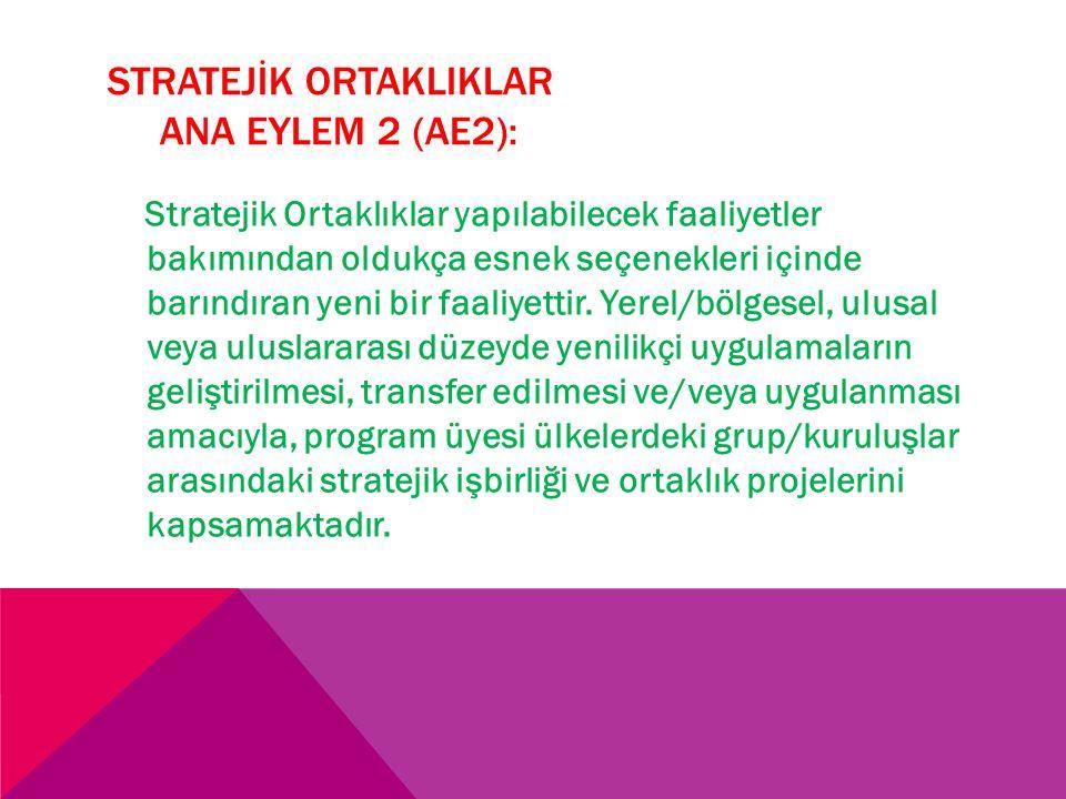 STRATEJİK ORTAKLIKLAR ANA EYLEM 2 (AE2):