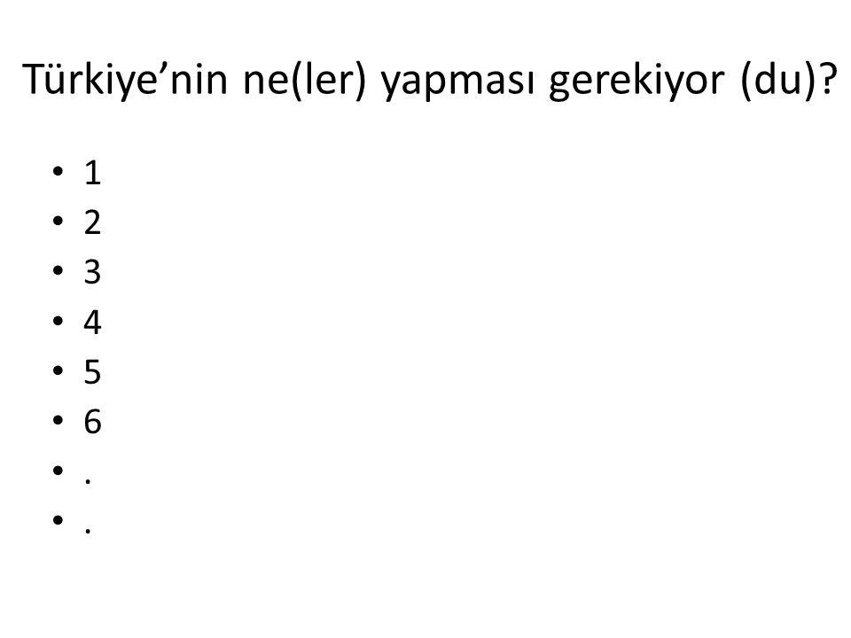 Türkiye'nin ne(ler) yapması gerekiyor (du)