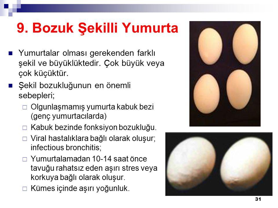 9. Bozuk Şekilli Yumurta Yumurtalar olması gerekenden farklı şekil ve büyüklüktedir. Çok büyük veya çok küçüktür.