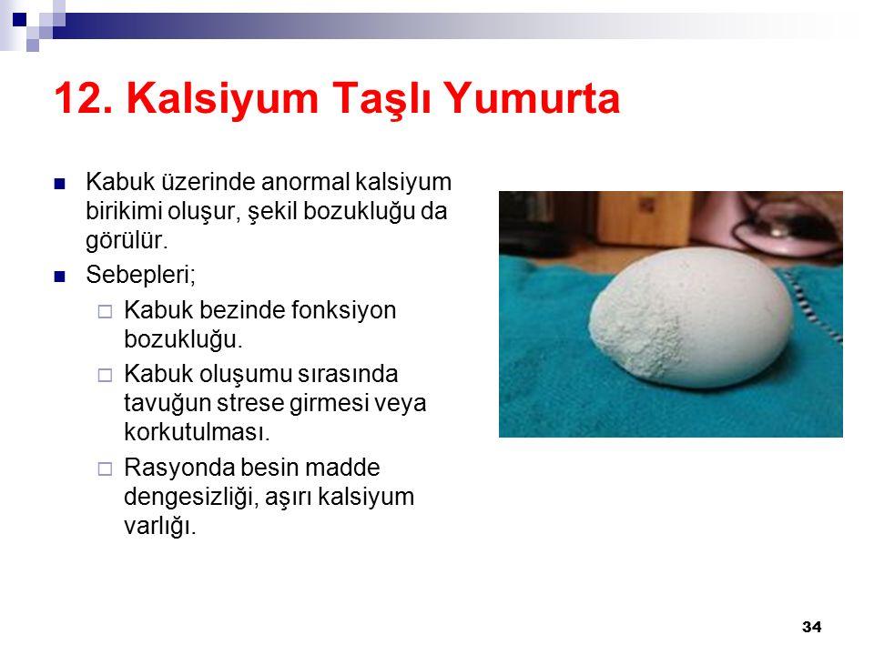 12. Kalsiyum Taşlı Yumurta