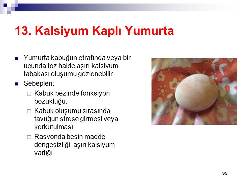 13. Kalsiyum Kaplı Yumurta
