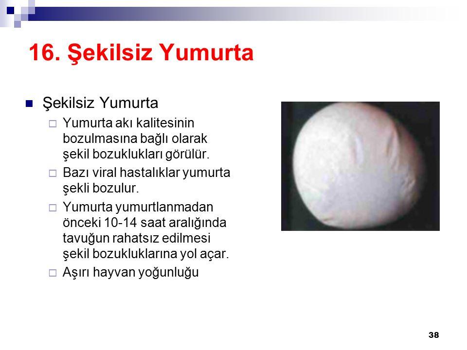 16. Şekilsiz Yumurta Şekilsiz Yumurta