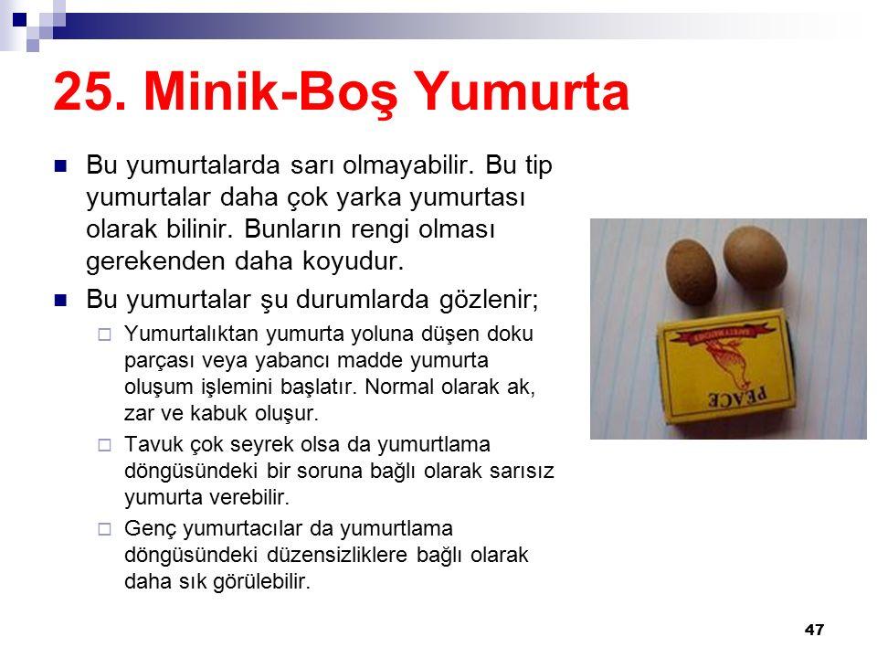 25. Minik-Boş Yumurta