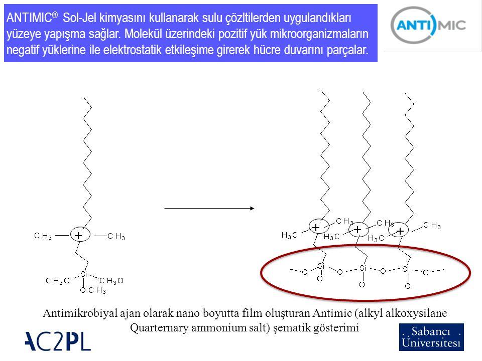 Quarternary ammonium salt) şematik gösterimi