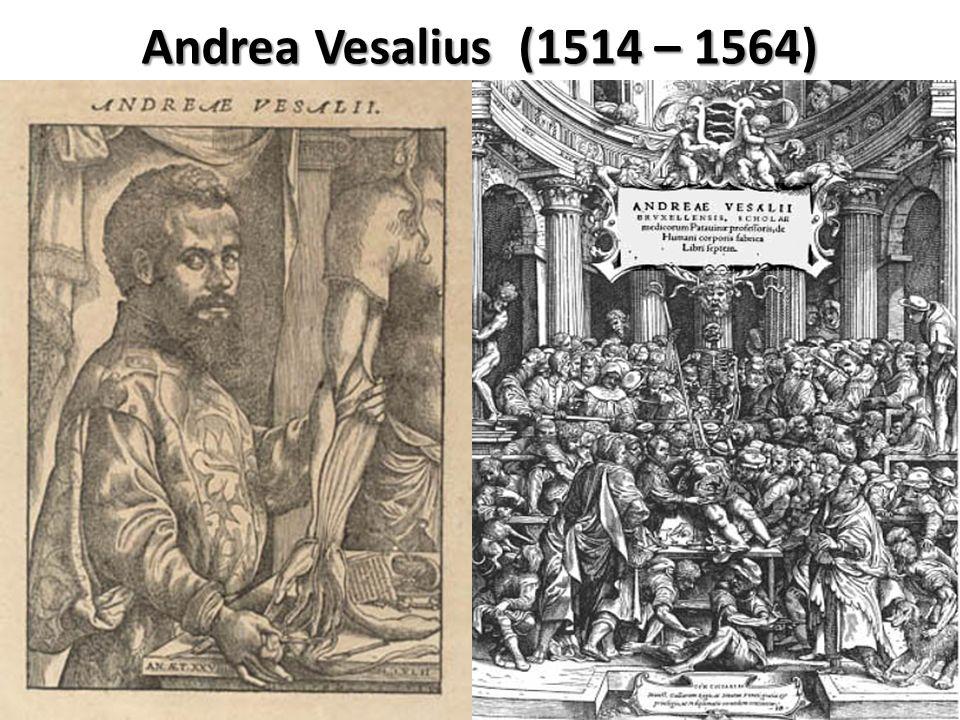 Andrea Vesalius (1514 – 1564) Kitap 1846'da yayınlanmıştır.