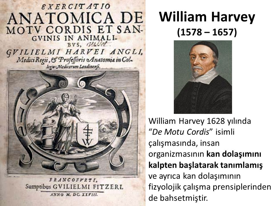 William Harvey (1578 – 1657)