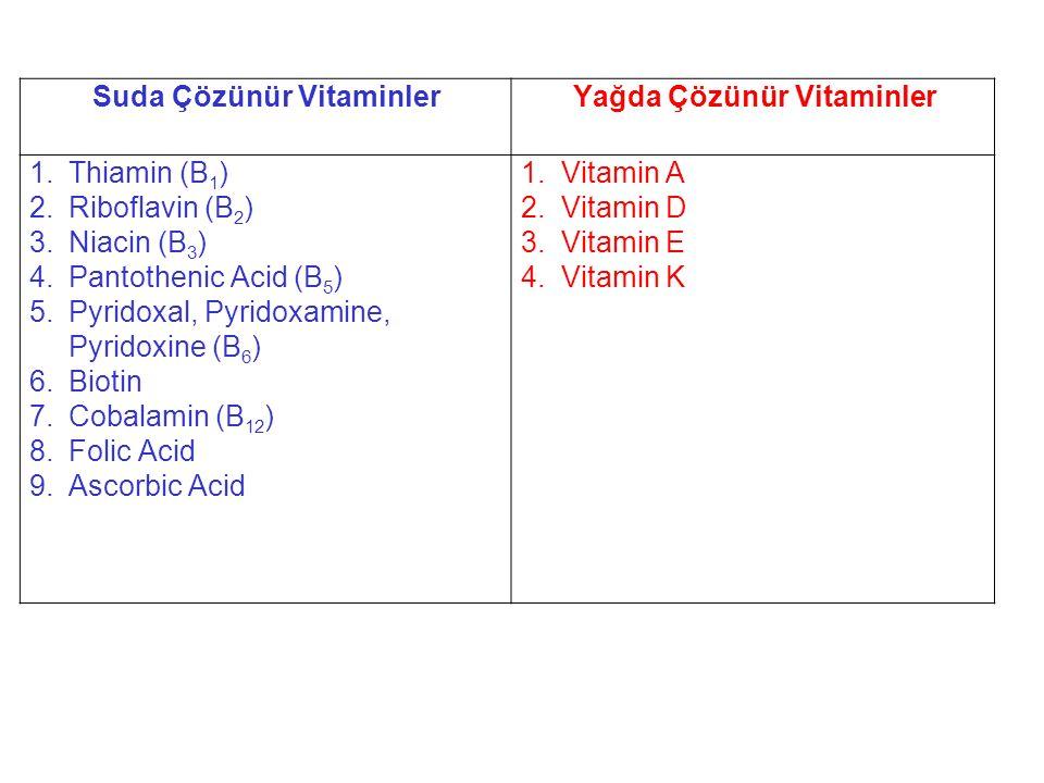 Suda Çözünür Vitaminler