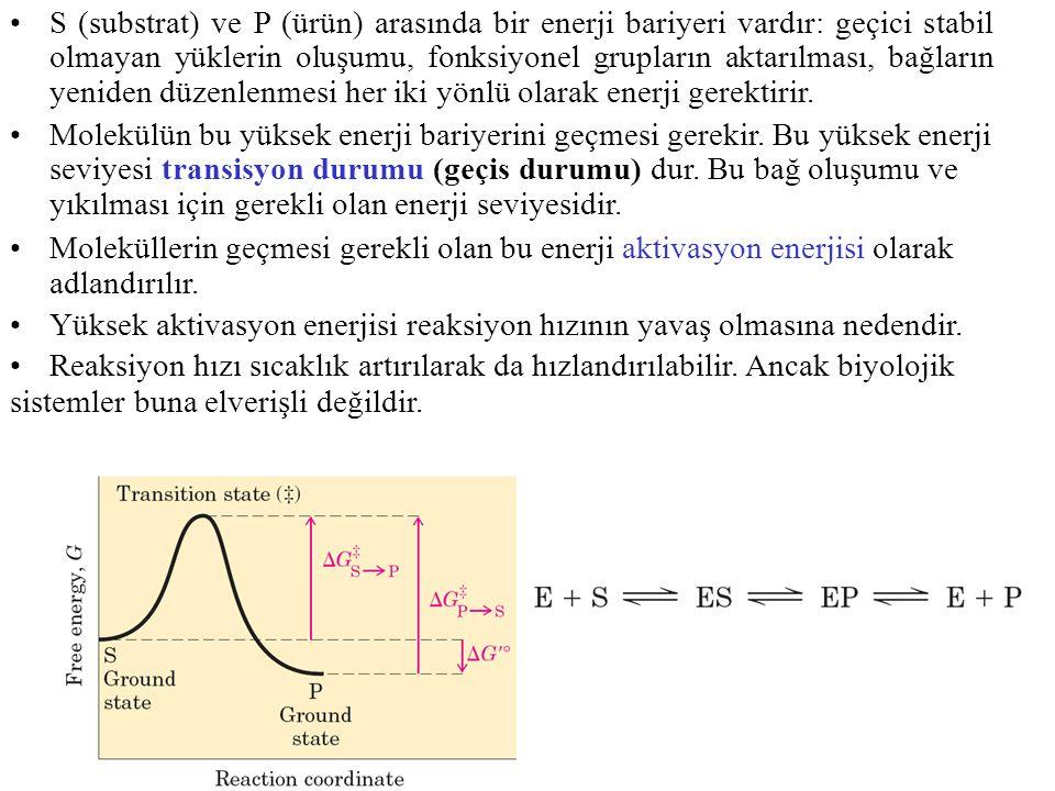 S (substrat) ve P (ürün) arasında bir enerji bariyeri vardır: geçici stabil olmayan yüklerin oluşumu, fonksiyonel grupların aktarılması, bağların yeniden düzenlenmesi her iki yönlü olarak enerji gerektirir.