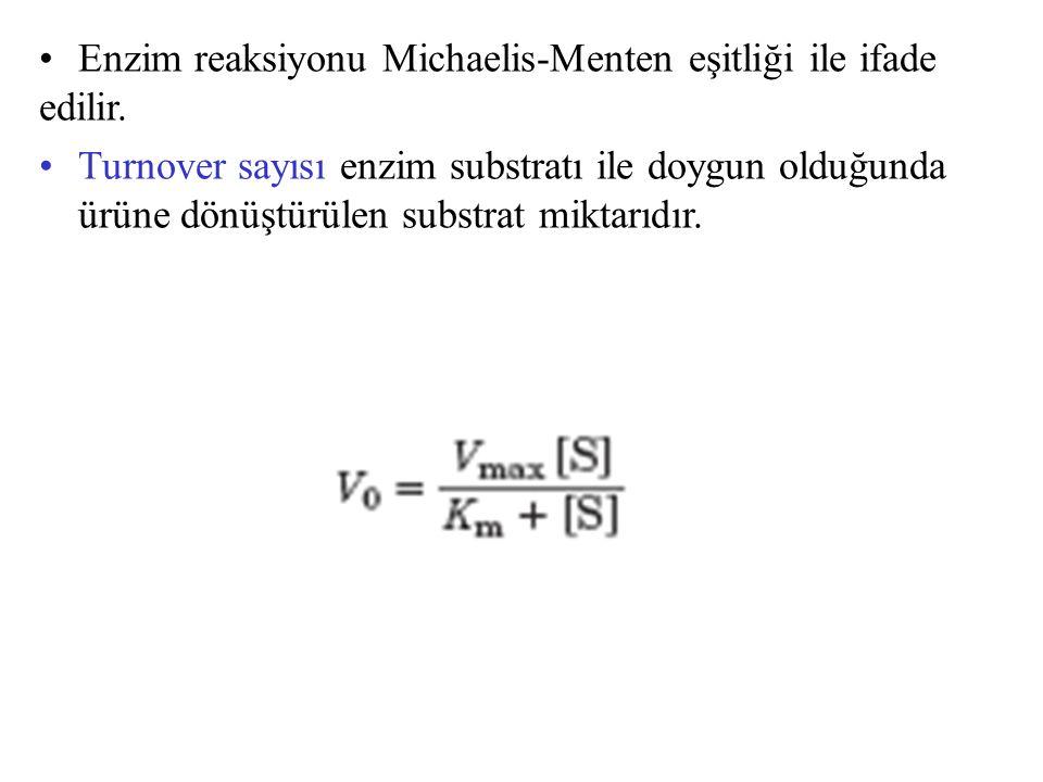Enzim reaksiyonu Michaelis-Menten eşitliği ile ifade