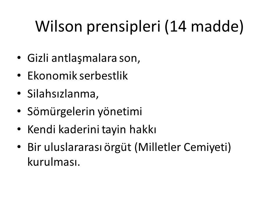 Wilson prensipleri (14 madde)