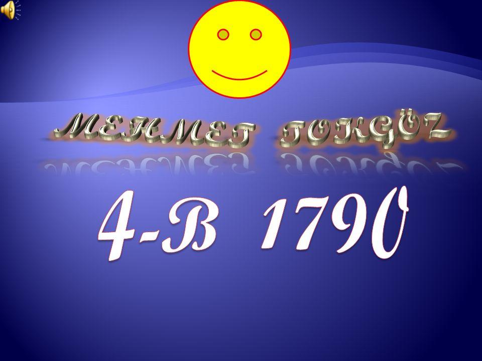 MEHMET TOKGÖZ 4-B 1790