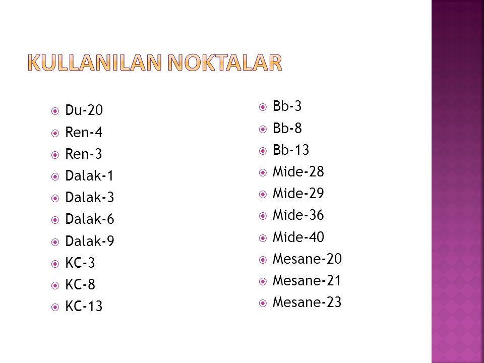 KULLANILAN NOKTALAR Bb-3 Du-20 Bb-8 Ren-4 Bb-13 Ren-3 Mide-28 Dalak-1