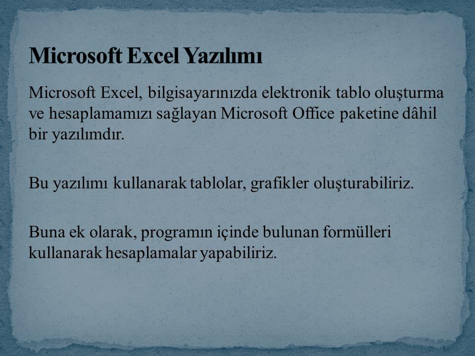 Microsoft Excel Yazılımı
