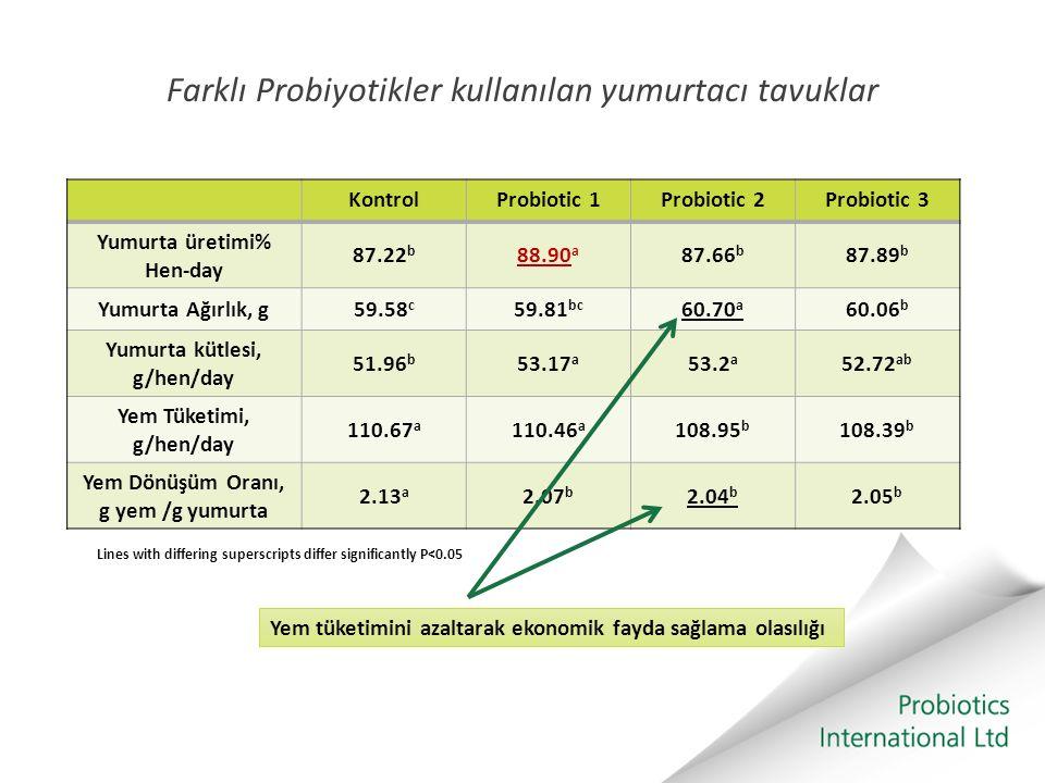 Farklı Probiyotikler kullanılan yumurtacı tavuklar