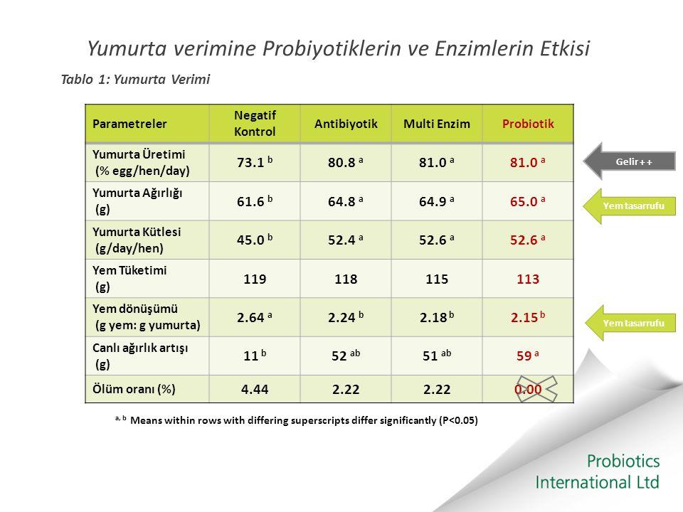 Yumurta verimine Probiyotiklerin ve Enzimlerin Etkisi