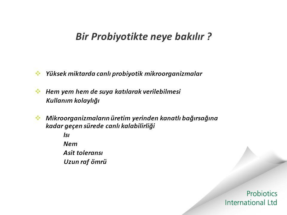 Bir Probiyotikte neye bakılır