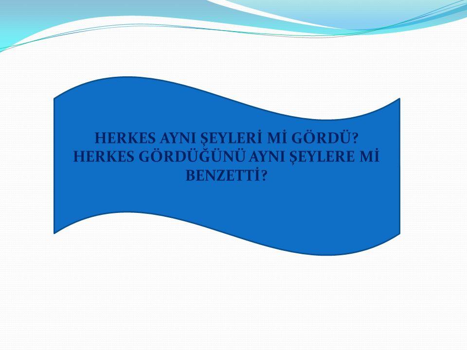 HERKES AYNI ŞEYLERİ Mİ GÖRDÜ