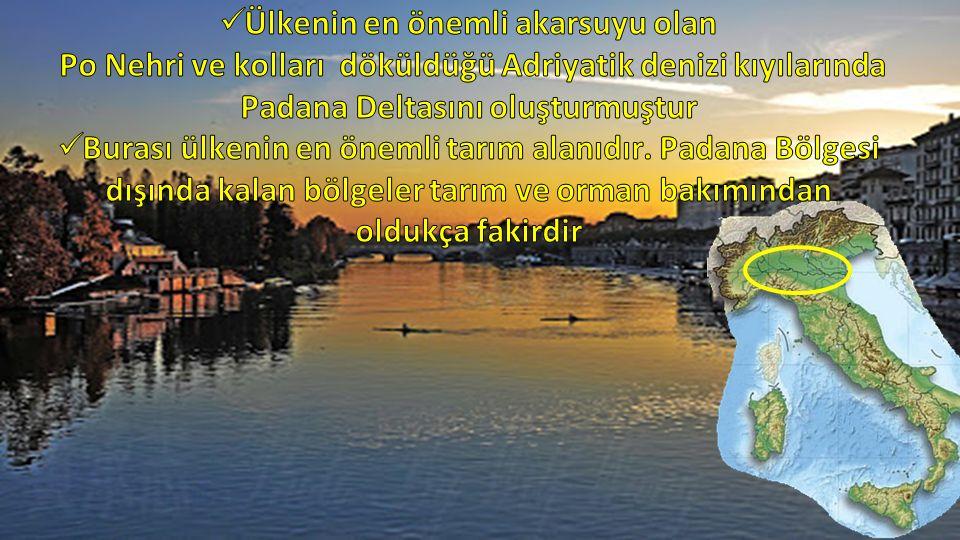Ülkenin en önemli akarsuyu olan Po Nehri ve kolları döküldüğü Adriyatik denizi kıyılarında Padana Deltasını oluşturmuştur