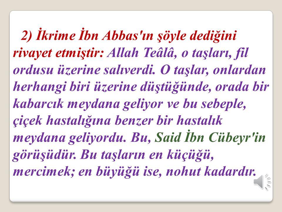 2) İkrime İbn Abbas ın şöyle dediğini rivayet etmiştir: Allah Teâlâ, o taşları, fil ordusu üzerine salıverdi.