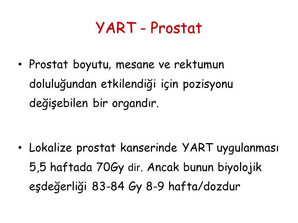 YART - Prostat Prostat boyutu, mesane ve rektumun doluluğundan etkilendiği için pozisyonu değişebilen bir organdır.