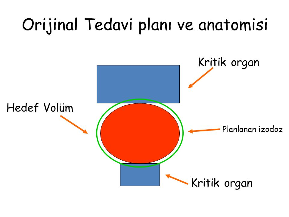 Orijinal Tedavi planı ve anatomisi
