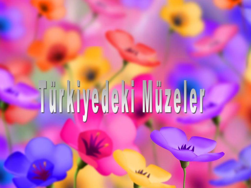 Türkiyedeki Müzeler