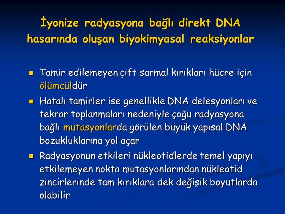 İyonize radyasyona bağlı direkt DNA hasarında oluşan biyokimyasal reaksiyonlar