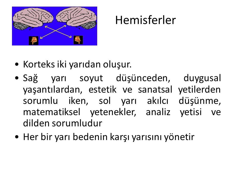 Hemisferler Korteks iki yarıdan oluşur.
