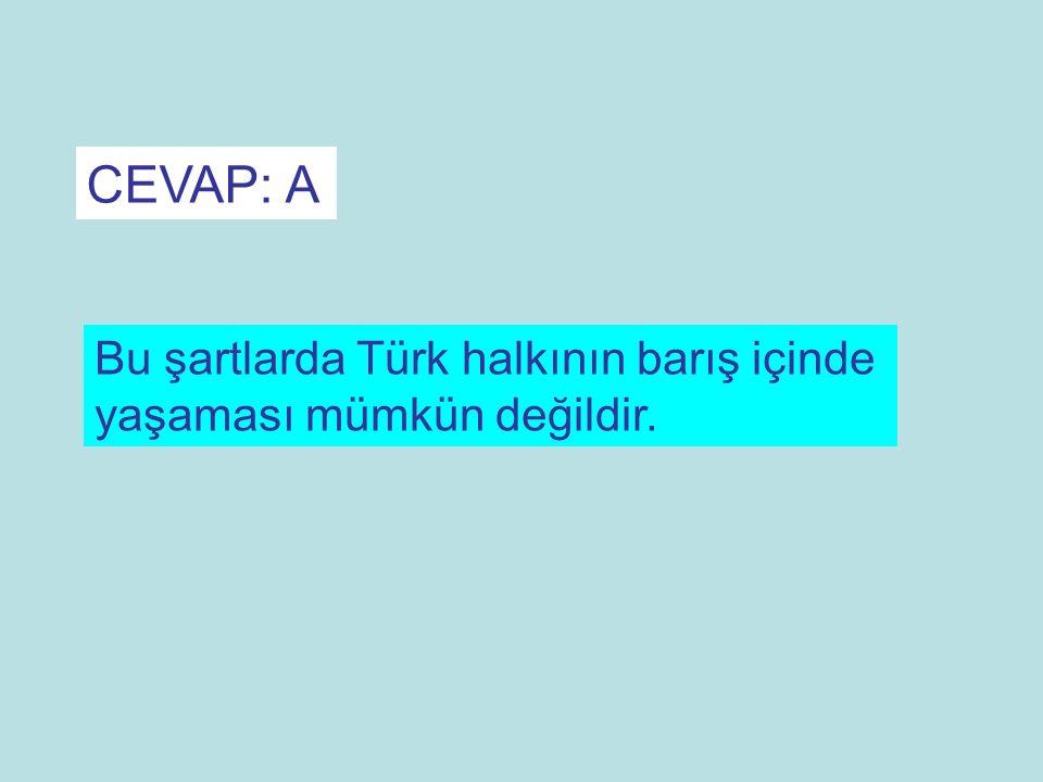 CEVAP: A Bu şartlarda Türk halkının barış içinde