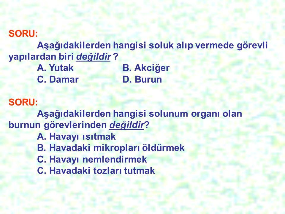 SORU: Aşağıdakilerden hangisi soluk alıp vermede görevli yapılardan biri değildir A. Yutak B. Akciğer.