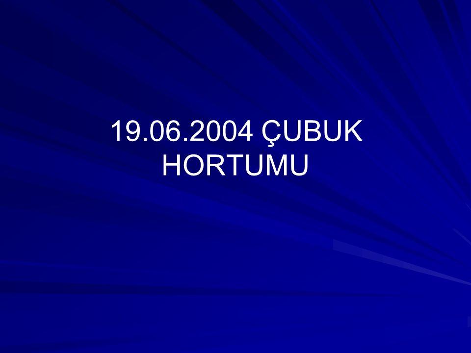 19.06.2004 ÇUBUK HORTUMU