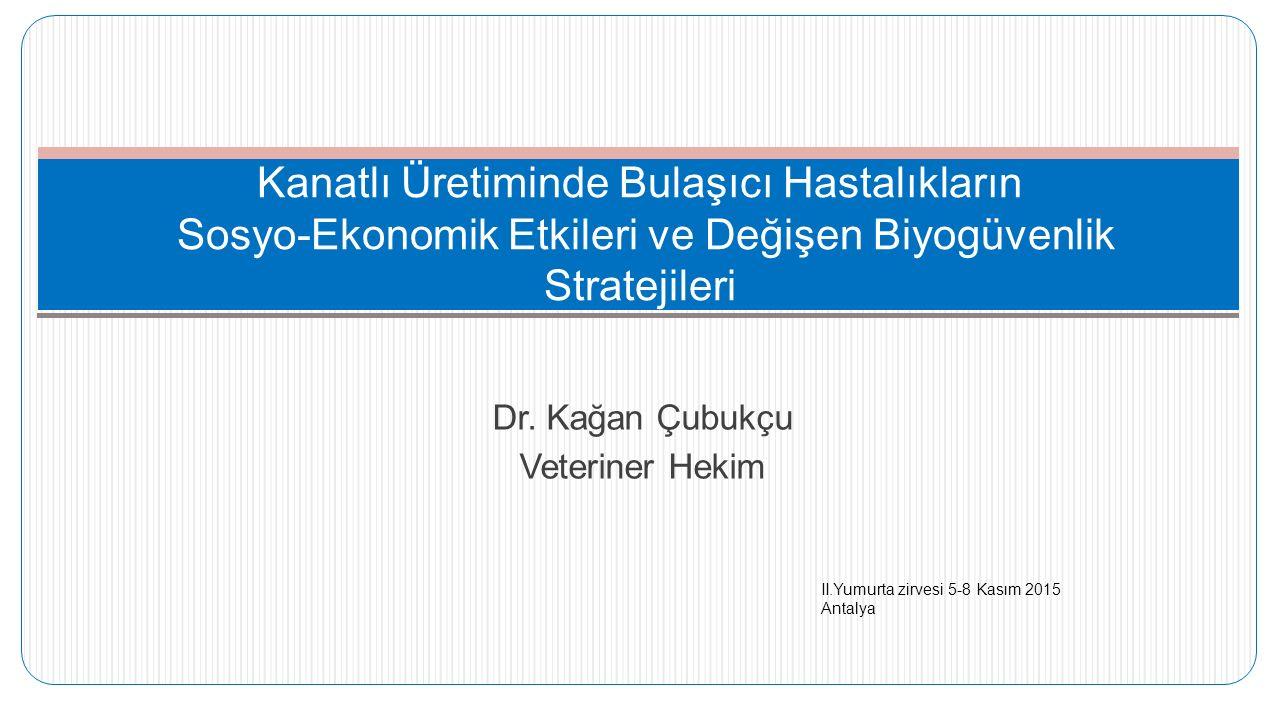 Dr. Kağan Çubukçu Veteriner Hekim