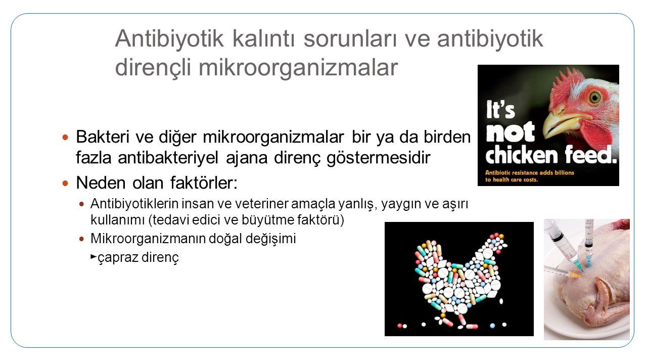 Antibiyotik kalıntı sorunları ve antibiyotik dirençli mikroorganizmalar