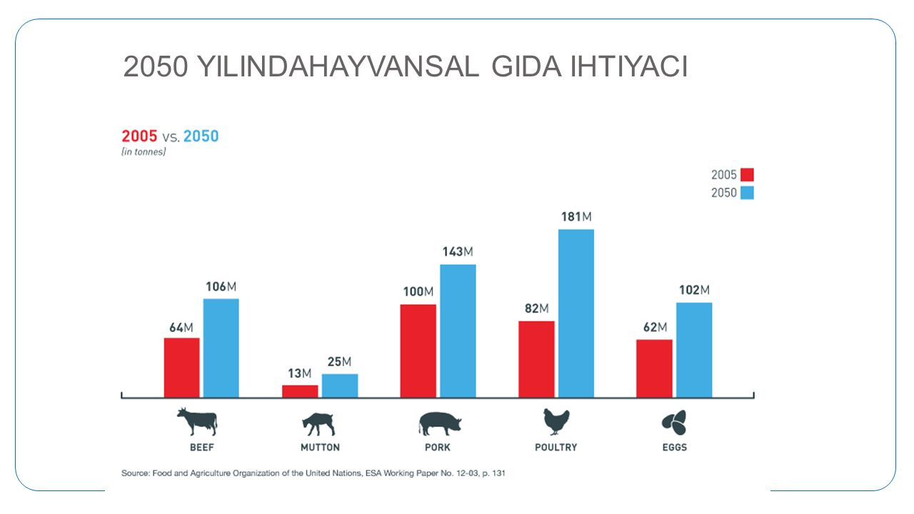 2050 YILINDAHAYVANSAL GIDA IHTIYACI