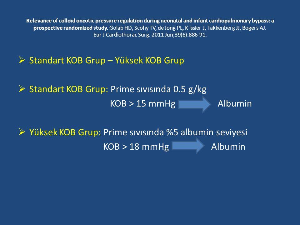 Standart KOB Grup – Yüksek KOB Grup