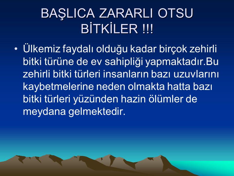 BAŞLICA ZARARLI OTSU BİTKİLER !!!