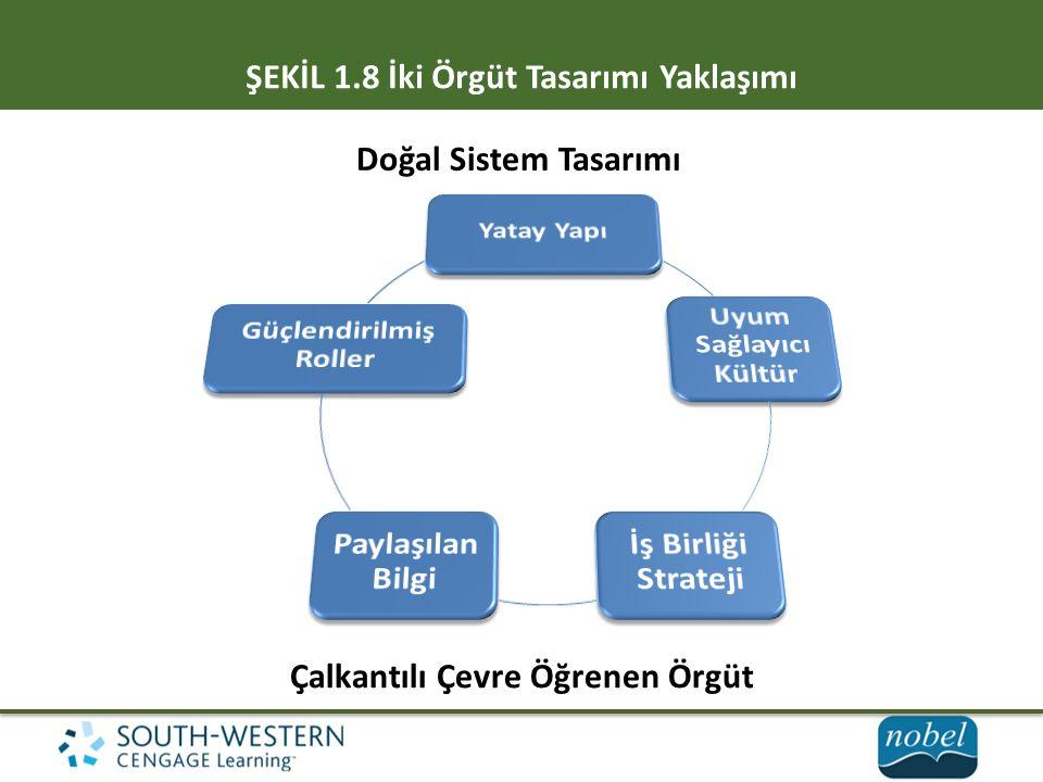 ŞEKİL 1.8 İki Örgüt Tasarımı Yaklaşımı