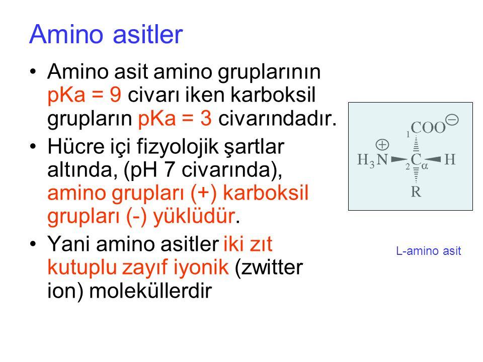 Amino asitler Amino asit amino gruplarının pKa = 9 civarı iken karboksil grupların pKa = 3 civarındadır.